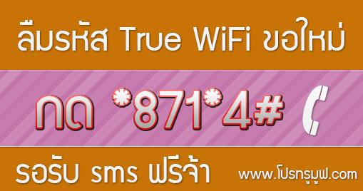 ขอรหัสผ่านไวไฟทรูมูฟ หรือลืมรหัส True WiFi ขอใหม่ได้ง่ายๆ
